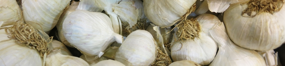 1946a77a9fdce86fd1c50f40234653aaa9e97486_raw-garlic-bulbs-fresh-seasoning (1)